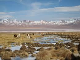 Puno, Isla del Sol, La Paz, Sucre, Potosi and Uyuni Salt Flats