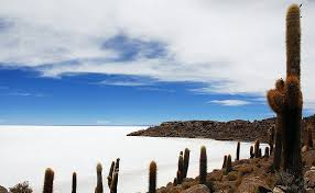 The Best of Bolivia