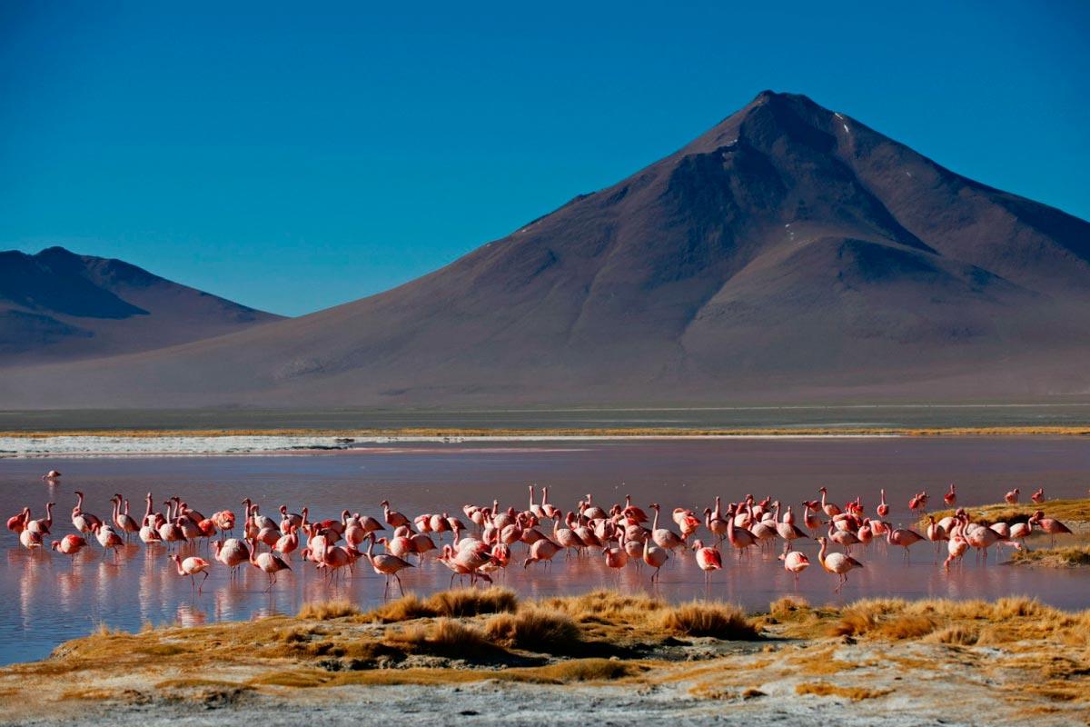 La Paz, Sucre, Potosi, Salar de Uyuni, Lagunas de Colores e Isla del Sol