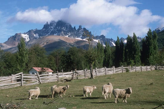 Bariloche and Isla Victoria