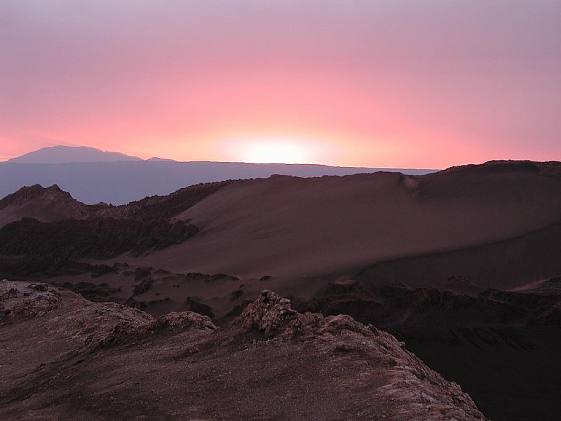 Soft and Vibrant Adventure in Atacama