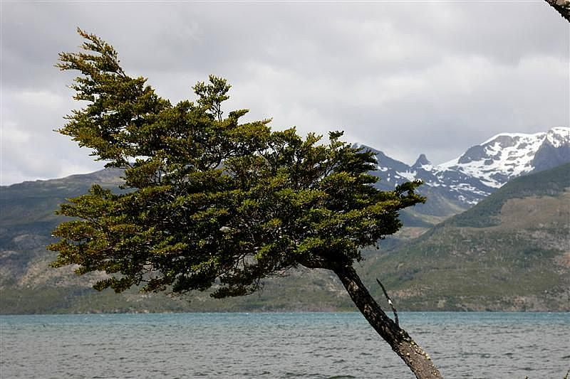 Torres Del Paine y Puerto Natales